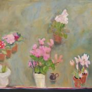Cyclamen, primulas and hyacinths