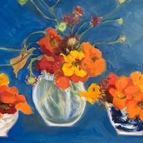 Blue, nasturtiums in pots