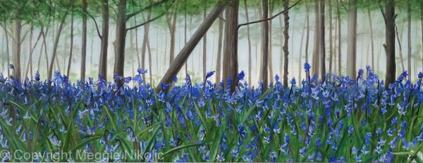 Batchwood bluebells