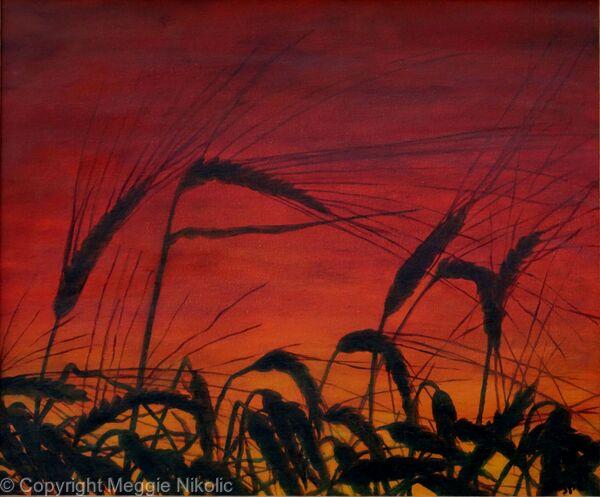 Woodfarm sunset