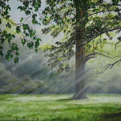 Misty morning at Childwickbury