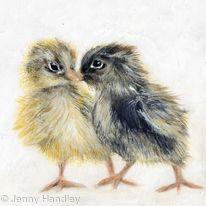 Wee Chicks
