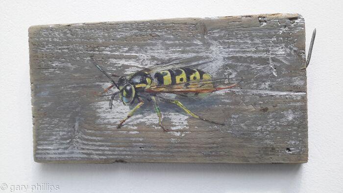 Wasp 340d