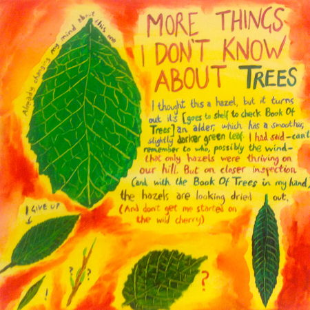 More Things I Don't Know About Trees