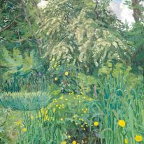 May tree and buttercups