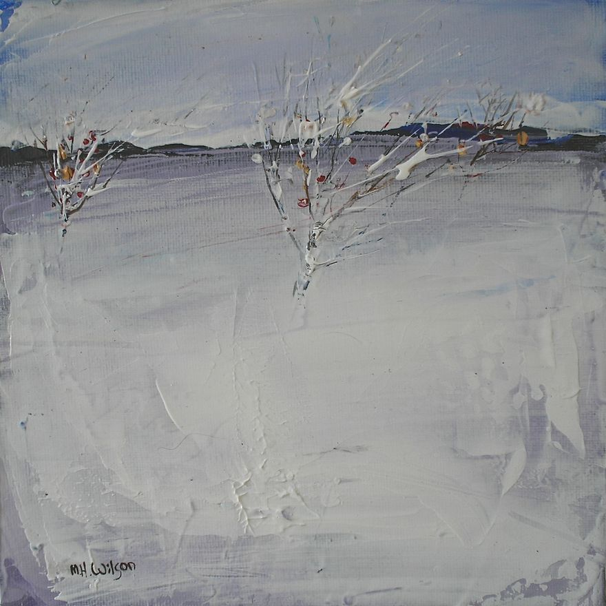 Snow Field 2
