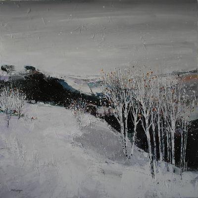 Bolehills Snowfall 3