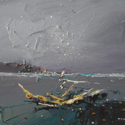 Saltwick Wreck 1