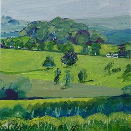 'Tortoise Hill' Derbyshire