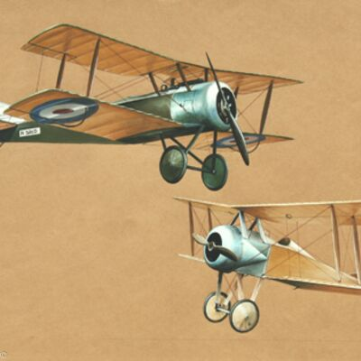 Sopwith Pup and Thomas Morse Scout