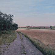 Dirt Road, Dusk