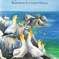 The Birds of Alderney