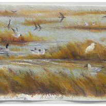 Birds at High Tide, Arne, Dorset
