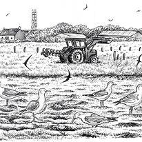 Farmer's Field, Alderney