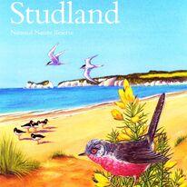 Studland Leaflet