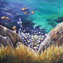Fulmars, Alderney - The Channel Islands