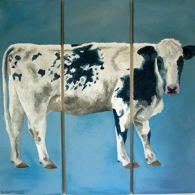 Normande Cow