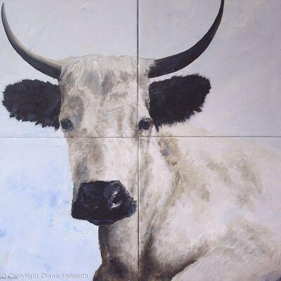 Vaynol Cow