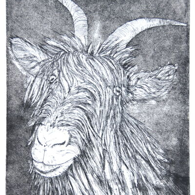 Matterhorn Goat