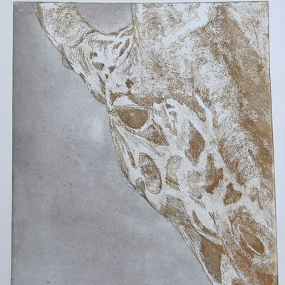 Giraffe in black and sepia