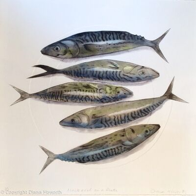 Five Mackerel