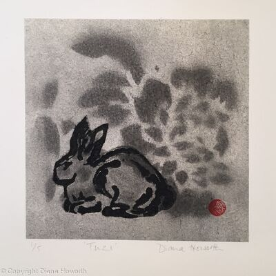 Tuzi - Chinese Rabbit