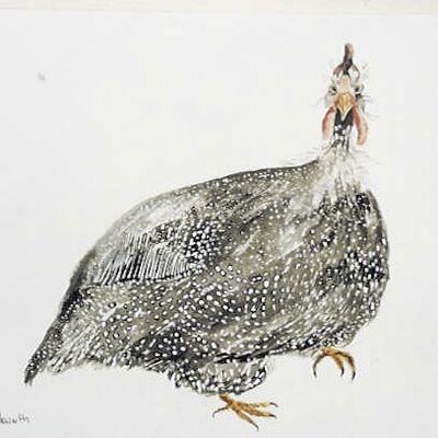 Guinea Fowl pen