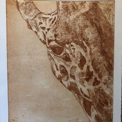 Giraffe - Burnt Umber