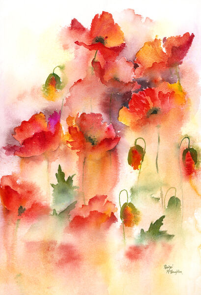 Misty Poppies