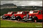 Glacier National Park White Company Red bus trio