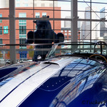 Blue bear looking at Shelby Cobra