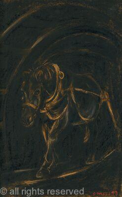the pitman's pony