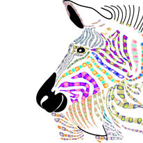 Zebra of many colours