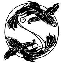 YY fish