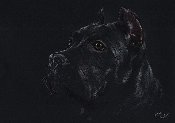 Custom pet portrait Pet painting Dog drawing Animal portrait Cane corso Dog lovers Original pastel portrait Personalized dog art