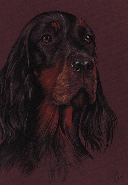 Realistic Colorful pet portrait Setter gordon Pet painting Dog drawing Animal portrait Gift for Dog lovers Original pastel portrait Personalized dog art