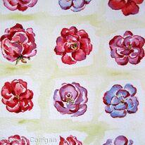 Rose water squares