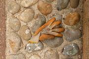 lost glove 3