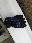 lost glove 15