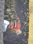 lost glove 4