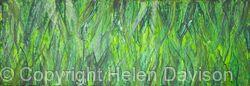 Barley Grass Abstract