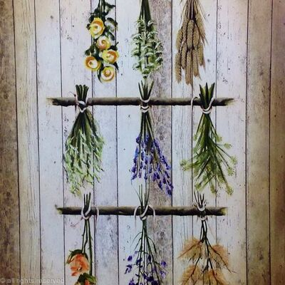 HANGING FLOWERS AND HERBS