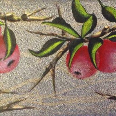 APPLES AND GREEN LEAVES