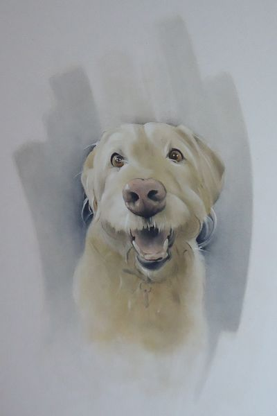 Biscuit the Labradoodle  SOLD  Commissioned
