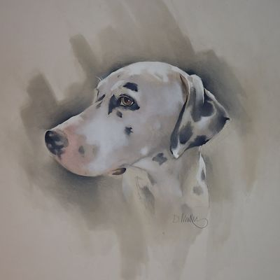 Bailey the Dalmatian 2  Exhibited, Hobbycraft, Reading