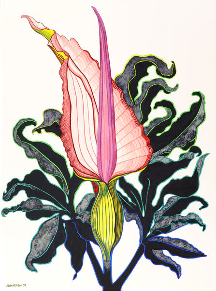 Flower study 3