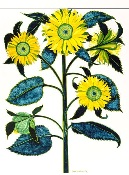 Flower study 12