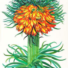 Flower study 7