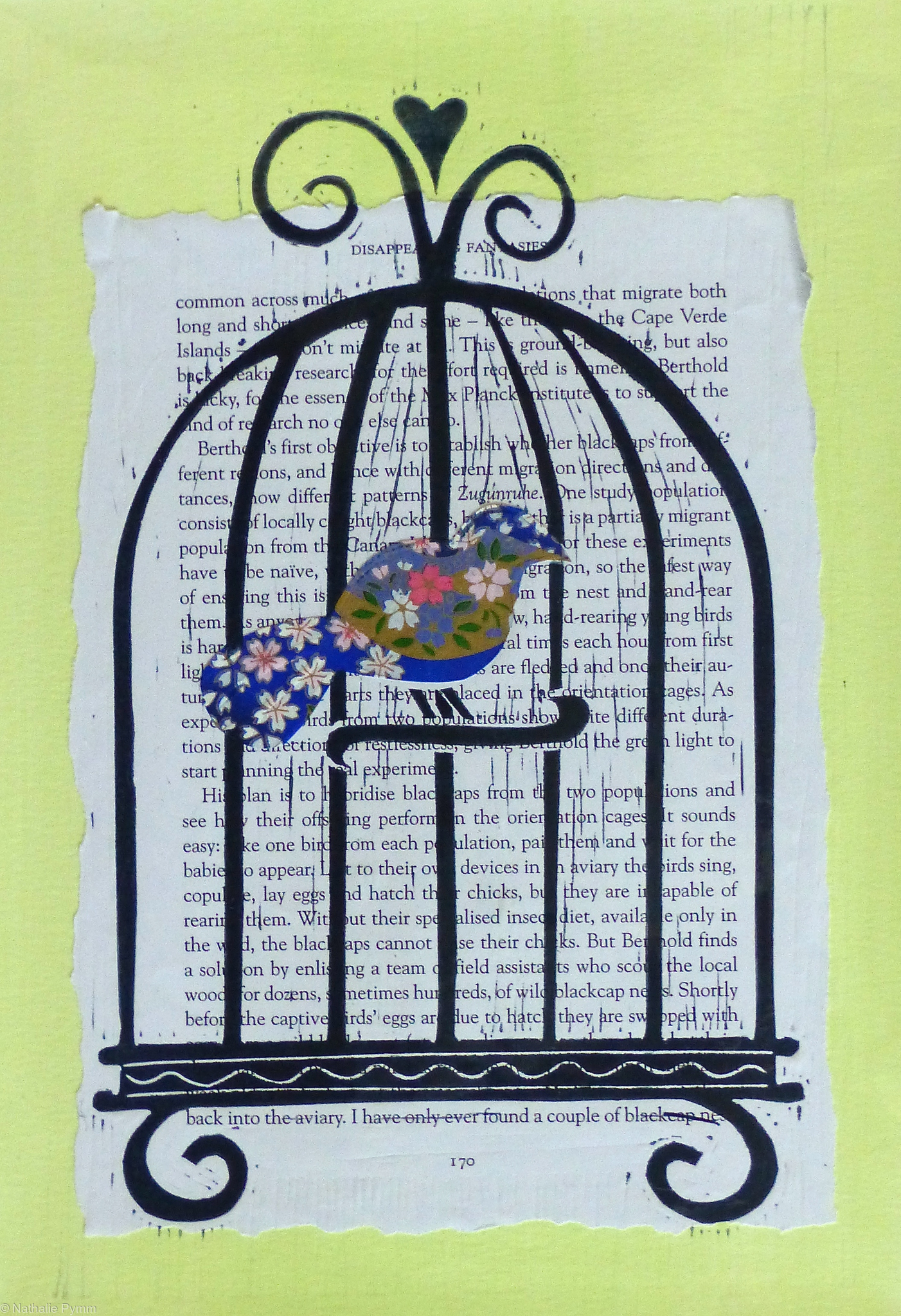 Blue bird in a cage