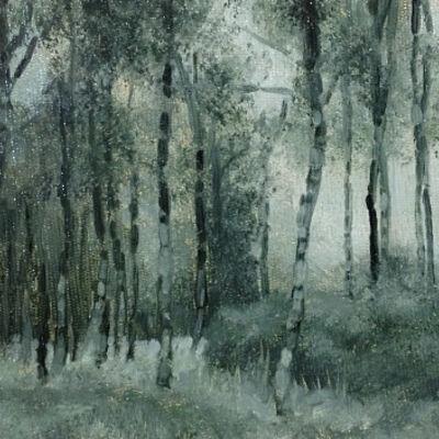 Silver Birch, Abernethy